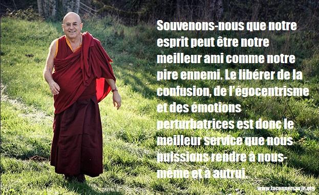 citations inspirantes de Mathieu Ricard, l'homme le plus heureux sur Terre développement personnel bonheur bien-être.jpeg