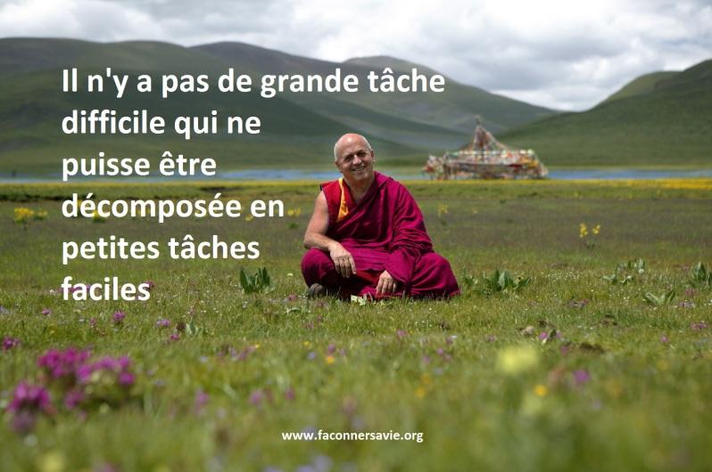 citations inspirantes de Mathieu Ricard, l'homme le plus heureux sur Terre faconner sa vie développement personnel.jpg