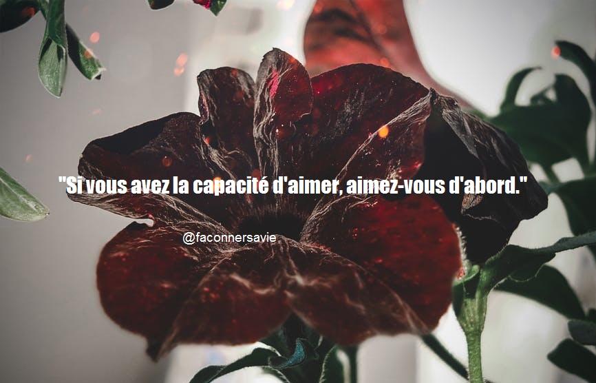 20 Citations inspirantes sur l'amour de soi je m'aime amour propre beauté c'est beau roses rouges coeur rose fleurs
